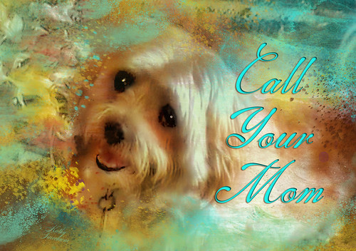 Call Your Mom by Kathy Tarochione