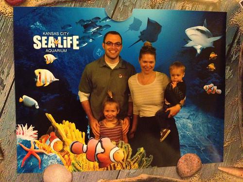 Sea Life Family
