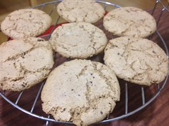 Bob's Redmill GF Chocolate Chip Cookie Mix by mikeysklar