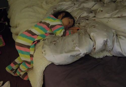喵寶睡姿輯