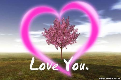 Ver Imagenes De Amor