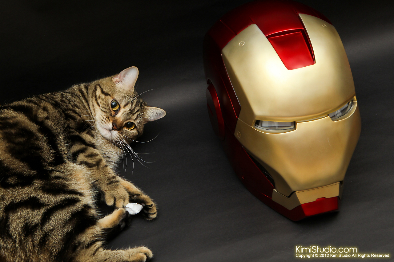 2012.05.10 Iron Man Helmet-004