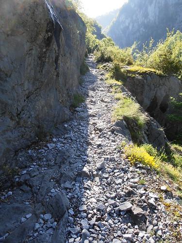 LA MATURE (chemin) 080