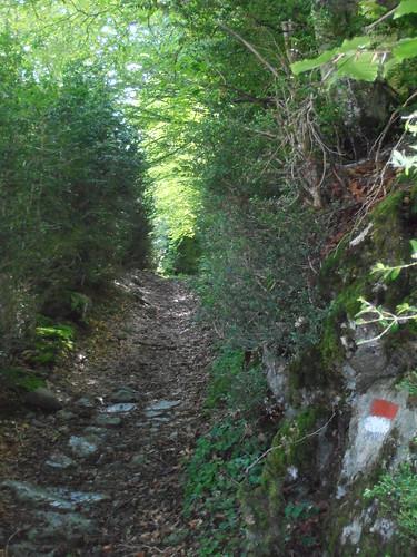 LA MATURE (chemin) 108
