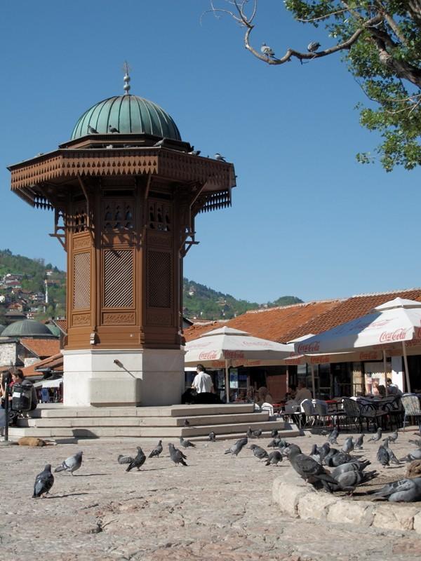 Place aux pigeons@Sarajevo