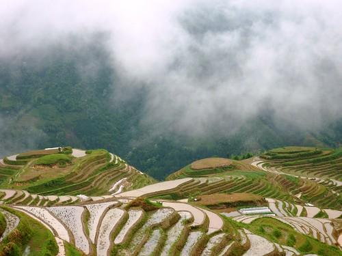 C-Guangxi-Pingan-Terrasse des 7 etoiles (60)