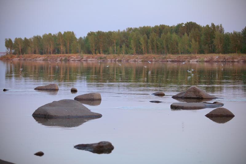 Природа Новосибирска