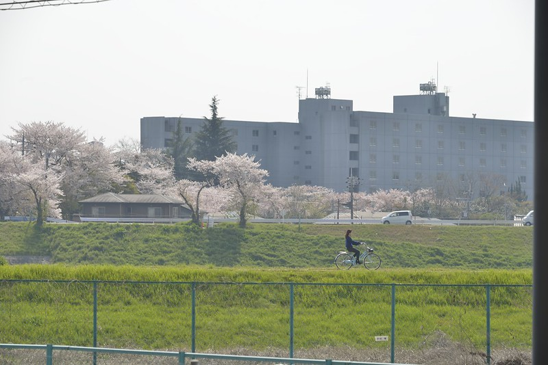 宇治・平等院