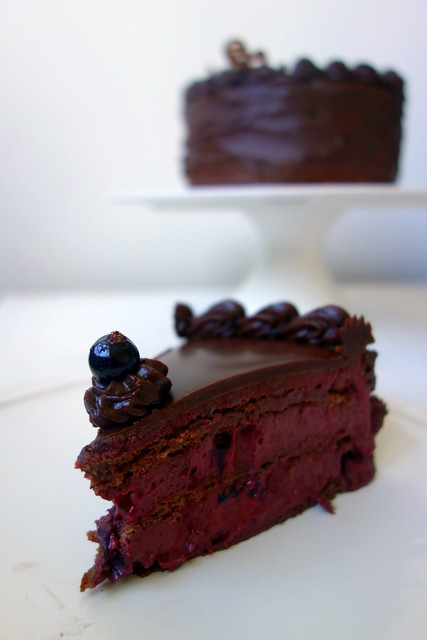 Chocolate and blackcurrant cake