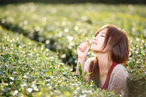 [フリー画像素材] 人物, 女性 - アジア, 人物 - 田園・農場, 台湾人, お茶, 人物 - 目を閉じる ID:201203300800
