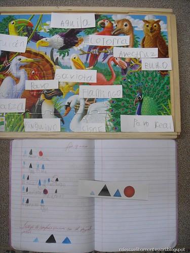 Bird Labeling with Grammar Symbols (from Mi Escuelita Montessori)