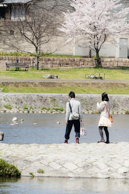 京都 鴨川