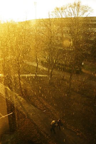 light rain yellow landscape