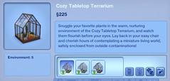 Cozy Tabletop Terrarium