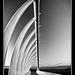 Te Rewa Rewa Bridge by Russ Dixon Photography