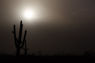 Another Dust Storm Pic.