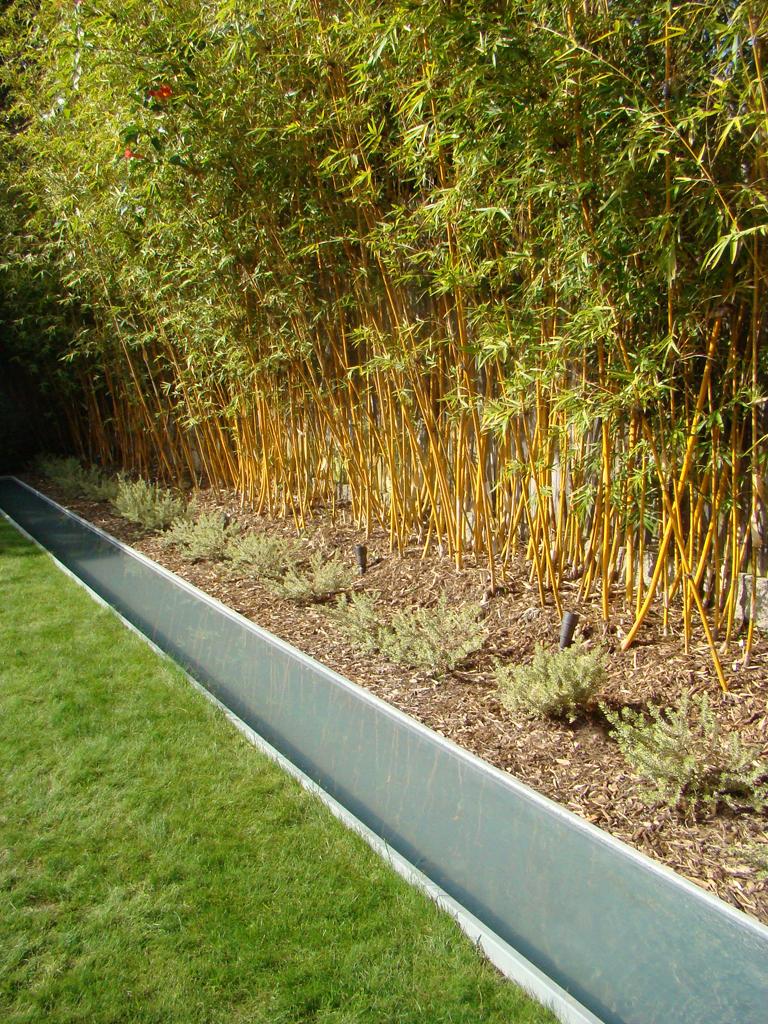 Bamboo reflection pool - Venice Garden & Home Tour - a photo on ...