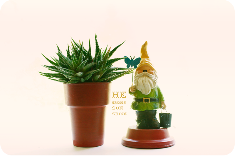{sunshine} gnome