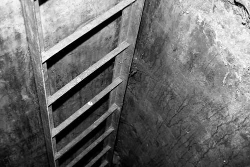 Ladder Into Casemates, Fort Fareham