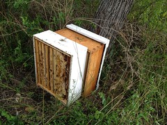 Overturned bee box 2