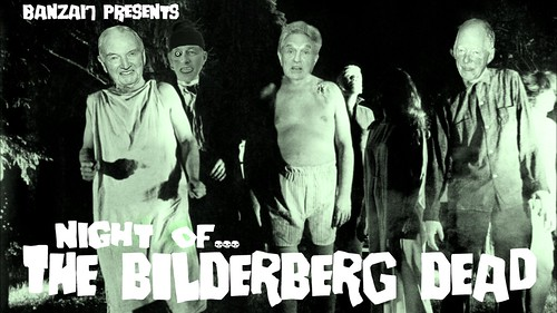 NIGHT OF THE BILDERBERG DEAD by Colonel Flick