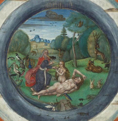Illuminated Manuscript, Bible (part), Creation of the world, and Eve, Walters Manuscript W.805, fol. 6v detail
