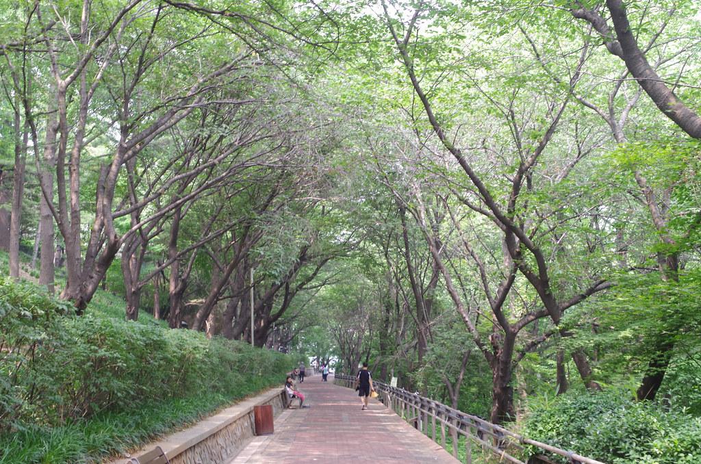 jayu park in incheon