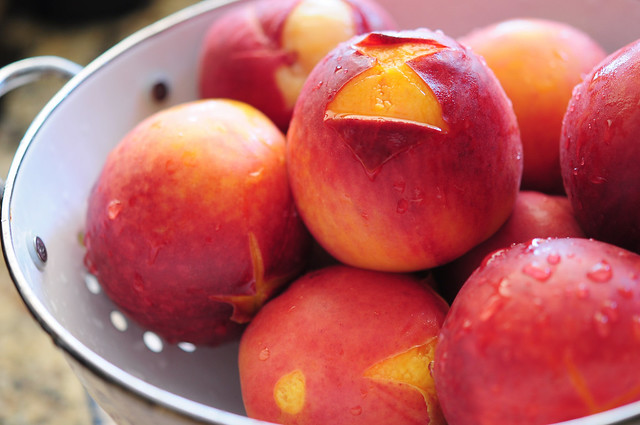 summer peaches, nature's treat