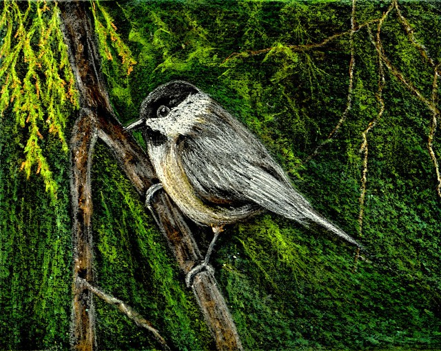 Cheerful Chickadee