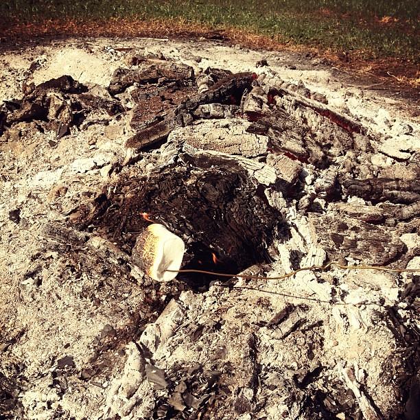 Roasting marshmallows #smores #hersheys #ilove #campbondfire #outandabout #photoadayjune