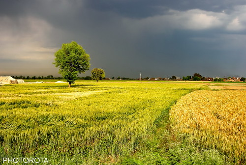 morning pakistan light colors clouds morninglight flickr earlymorning fields punjab abid photorota