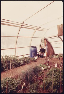 Solar greenhouse owned and built by Peter Howell, located at about the 8,500 foot level in the front range..., 05/1975.
