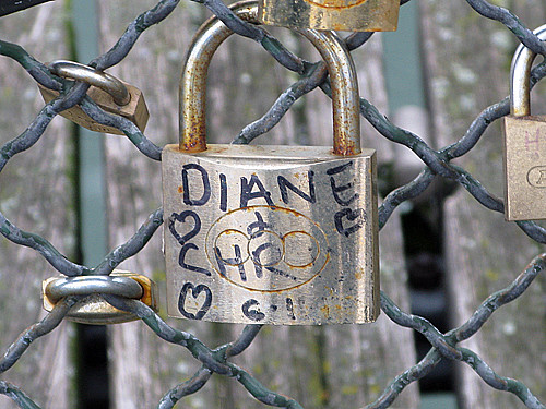 diane and chris - Pont des Arts, Paris