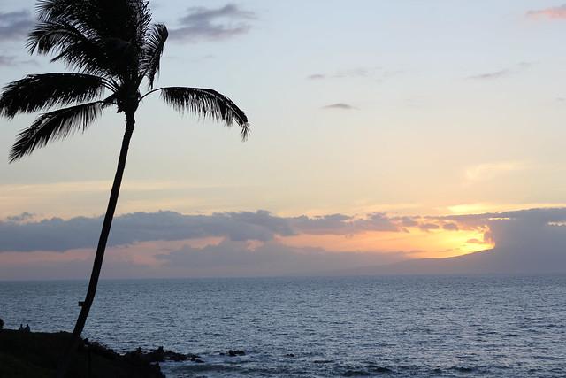 Maui2012050.jpg