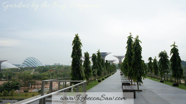 gardens by the bay, singapore (14)