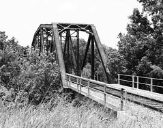1921 Through Truss Railroad Bridge over Trinity River, South of Hwy 31, Trinidad, Texas 1206101244BW