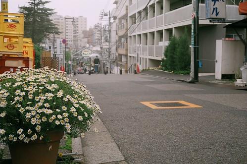 yashica-electro35-fuji100-24-0426-003