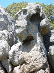 Face in the rock of the Quarry