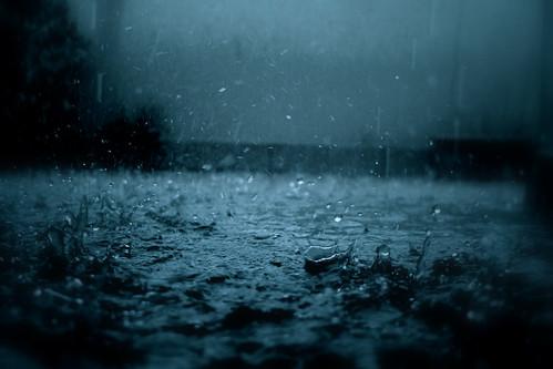 無料写真素材, 自然風景, 雨