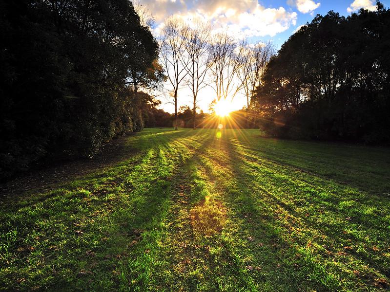 Sunset over Waitoetoe Park