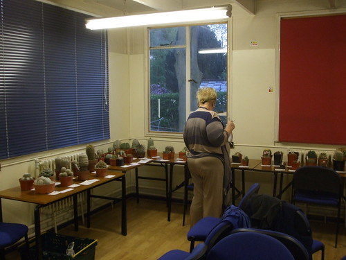 BCSS Birmingham May Meeting - Mini Judges Course