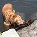 Minnewaska State Park - Wawarsing, NY - 2012, May - 15.jpg