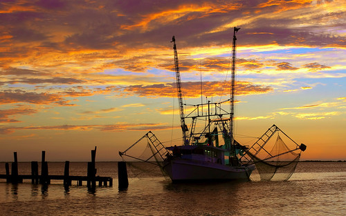 Shrimp Boat Grand Isle, LA