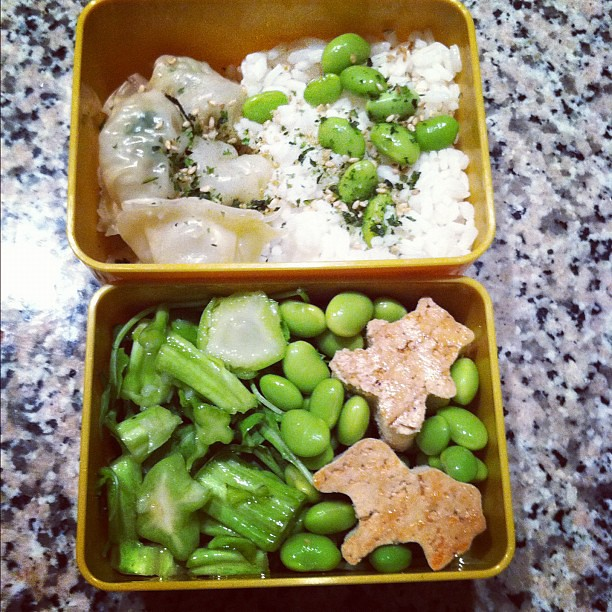 #kvpinmybelly : My #birthday #bento with chicken dumplings, rice, arugula and tofu. So cute! #fb