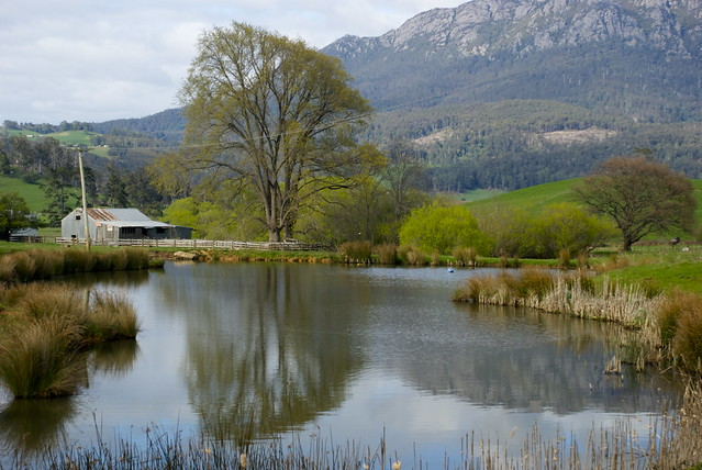 26/09/2011 on the way to Craddle Mountain, Tasmania