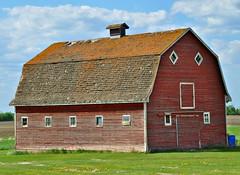 Alberta Red Barn