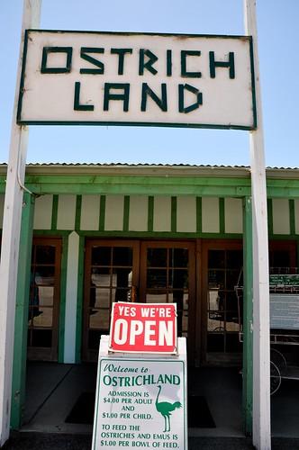 Ostrich Land Sign.