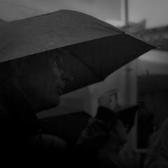 Dagens foto - 241: Summer Rain