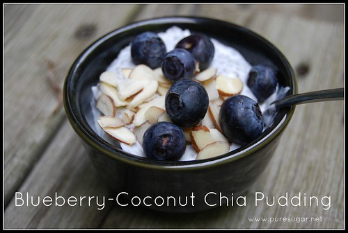 blueberry-coconut chia pudding