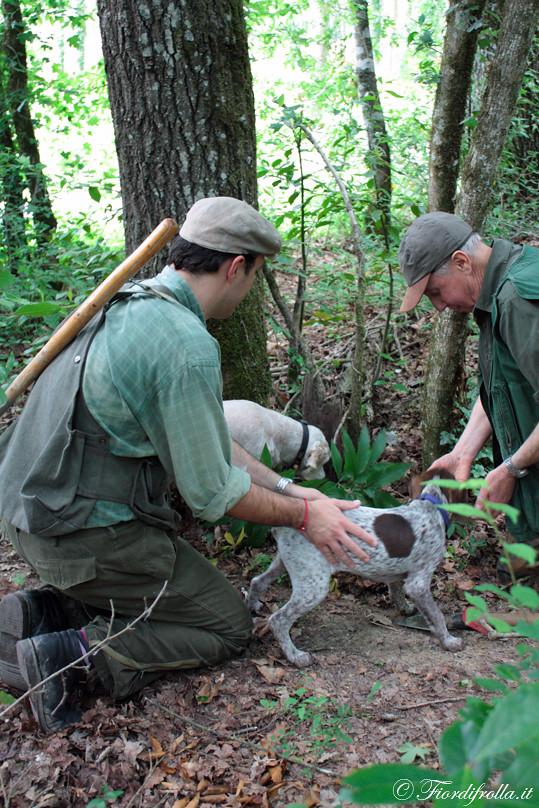 A caccia di tartufi